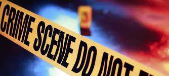 चोरी करने वाले गिरोह के 3 चोरों को किया गिरफ्तार